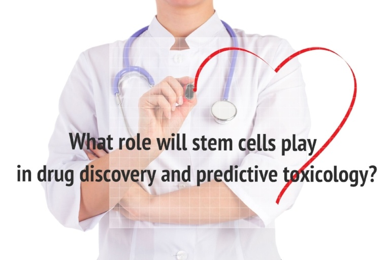 Stem cells play a role in drug discovery and predictive toxicology.