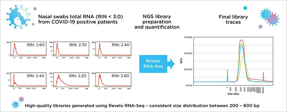 Revelo™ RNA-Seq library preparation kit