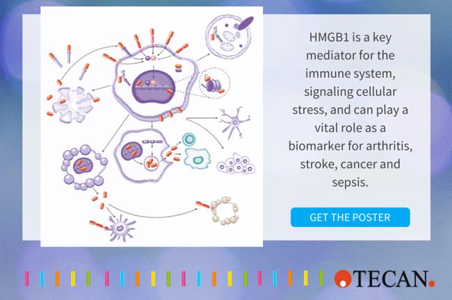 HMGB1 biomarker for cancer stroke sepsis
