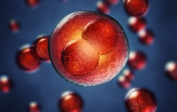 epigenetics gene therapy research