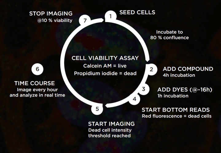 Live cell imaging: how to gain more control