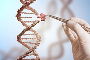 CRISPR-Cas9ゲノム編集
