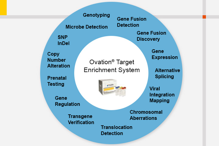 Genotyping-by-Sequencing simplified