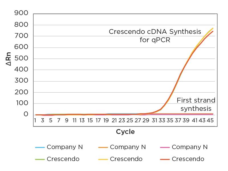 SARS-CoV2 nasal swabs cDNA amplified