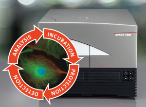 Automated live cell imaging