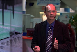 Automated metabolic analysis in photodynamic tumor therapy <